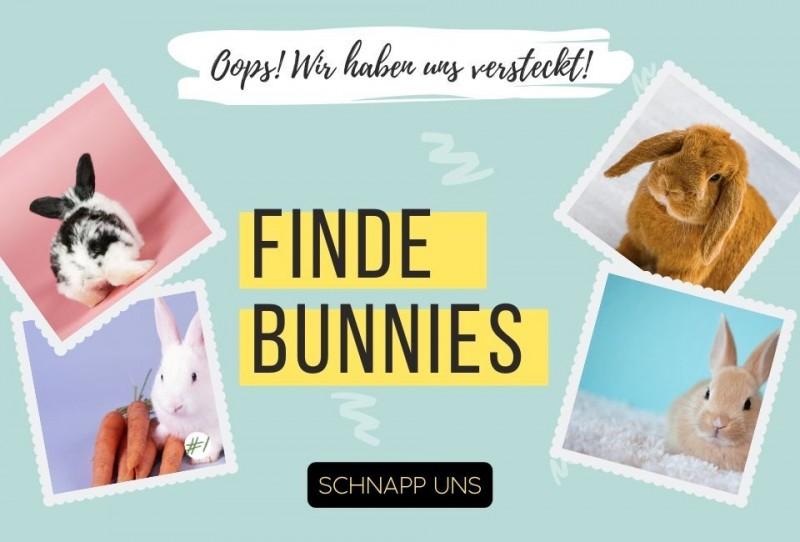 media/image/find-bunnies-960x350.jpg